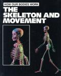 Skeleton & Movement