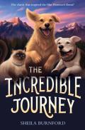 Incredible Journey
