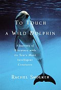 To Touch A Wild Dolphin