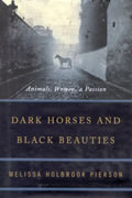 Dark Horses & Black Beauties