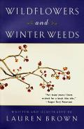 Wildflowers and Winter Weeds Cover