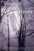Power (Norton Paperback Fiction) Cover