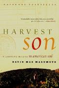 Harvest Son Planting Roots in American Soil