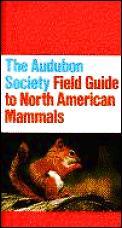 Audubon Field Guide to North American Mammals