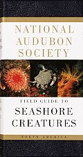 The Audubon Society Field Guide to North American Seashore Creatures (Audubon Society Field Guide) Cover