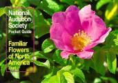 Familiar Flowers of North America: Eastern Region (Audubon Society Pocket Guides)