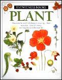 PLANT Eyewitness Books