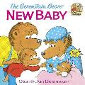 The Berenstain Bears and the New Baby (Berenstain Bears First Time Chapter Books)