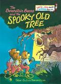 The Berenstain Bears and the Spooky Old Tree (Bright & Early Book)