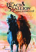 Black Stallion #17: Black Stallion Challenged Cover
