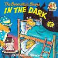The Berenstain Bears in the Dark (Berenstain Bears First Time Chapter Books) Cover