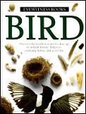 Bird Eyewitness