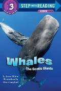 Whales, the Gentle Giants (Step Into Reading: A Step 3 Book)