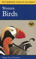Peterson Field Guide To Western Birds 2nd Edition