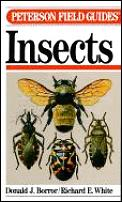 Peterson Field Guide To The Insects Of America Nort