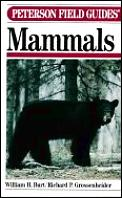 Peterson Field Guide To Mammals