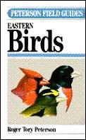 Field Guide To Eastern Birds 4th Edition