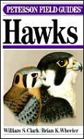 Field Guide to Hawks Cover