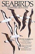 Seabirds An Identification Guide