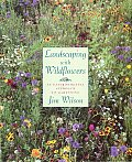 Landscaping With Wildflowers An Environm