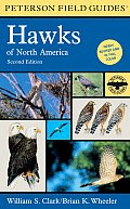 Field Guide To Hawks of North America 2ND Edition :Peterson