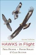 Hawks in Flight Cover