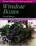 Window Boxes How To Plant & Maintain Bea