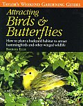 Taylors Weekend Gardening Guide to Attracting Birds & Butterflies How to Plant a Backyard Habitat to Attract Hummingbirds & Other Winged Wildlife