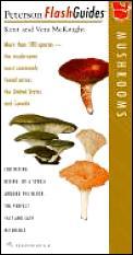 Peterson Flash Guides Mushrooms