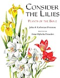 Consider The Lilies Plants Of The Bible