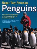 Penguins A Tribute From King Penguin In Words & Pictures to His Favorite Family of Birds
