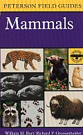 A Field Guide to Mammals: North America North of Mexico (Peterson Field Guides)