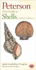 Shells of North America (Peterson First Guide)