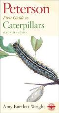 Peterson First Guide To Caterpillars of North America (93 Edition)