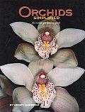 Orchids Simplified An Indoor Gardening