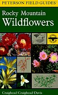 A Field Guide to Rocky Mountain Wildflowers: Northern Arizona and New Mexico to British Columbia (Peterson Field Guides)