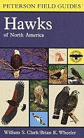 Field Guide To Hawks Of North America 1st Edition