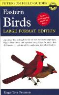 A Field Guide to the Birds of Eastern and Central North America: Large Format Edition (Large Print) (Peterson Field Guides)