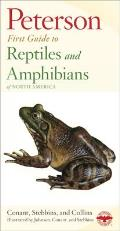 Peterson First Guide To Reptiles & Amphibians