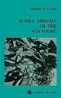 Sessile Animals of the Sea Shore