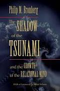 The Shadow of the Tsunami and the...