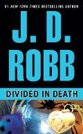 Divided in Death Cover