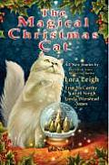 Magical Christmas Cat