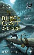 Bad Luck Cat Mystery #1: Black Cat Crossing