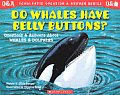 Do Whales Have Belly Buttons Questions & Answers about Whales & Dolphins
