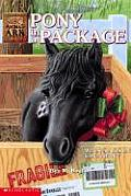 Animal Ark 27 Pony In A Package