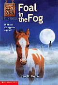 Foal in the Fog Cover
