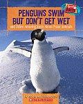 Penguins Swim But Dont Get Wet