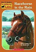 Animal Ark 40 Racehorse In The Rain