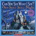 On a Scary Scary Night: Picture Puzzles to Search and Solve (Can You See What I See?) Cover